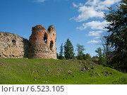 Замок Вана-Вастселийна, Эстония, фото № 6523105, снято 5 сентября 2014 г. (c) Борис Заманский / Фотобанк Лори