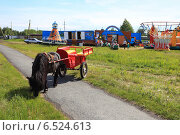 Купить «Черный пони с красной кибиткой», эксклюзивное фото № 6524613, снято 13 июня 2014 г. (c) Анатолий Матвейчук / Фотобанк Лори