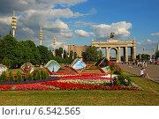 Купить «ВДНХ (ВВЦ) в Москве», эксклюзивное фото № 6542565, снято 7 июля 2009 г. (c) lana1501 / Фотобанк Лори