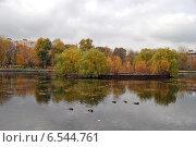 Купить «Егерский пруд в Сокольниках в Москве осенью», эксклюзивное фото № 6544761, снято 14 октября 2014 г. (c) lana1501 / Фотобанк Лори
