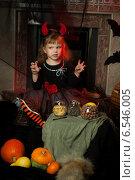 Купить «Симпатичная маленькая ведьма», фото № 6546005, снято 16 января 2019 г. (c) Останина Екатерина / Фотобанк Лори