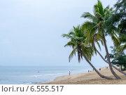 Купить «Пляж в бухте Санья», фото № 6555517, снято 7 сентября 2014 г. (c) Мария Козаченко / Фотобанк Лори