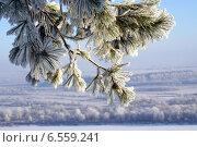 Зима. Стоковое фото, фотограф Раушания Аппакова / Фотобанк Лори