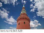 Купить «Московский Кремль, Москва, Россия», фото № 6561529, снято 15 июня 2013 г. (c) Владимир Журавлев / Фотобанк Лори