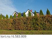Купить «Красивый  жилой  дом за живой изгородью», эксклюзивное фото № 6583809, снято 19 октября 2014 г. (c) Svet / Фотобанк Лори