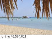 Отдых в Египте на Красном море (2014 год). Редакционное фото, фотограф Николай Михайловский / Фотобанк Лори