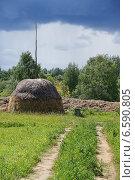 Купить «Сельский пейзаж», фото № 6590805, снято 23 июня 2014 г. (c) Павел Москаленко / Фотобанк Лори
