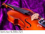 Купить «Скрипка на фиолетовом фоне», фото № 6593721, снято 27 октября 2014 г. (c) Павел Лиховицкий / Фотобанк Лори