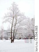 Купить «Заснеженный зимний двор», эксклюзивное фото № 6594065, снято 10 января 2014 г. (c) Дудакова / Фотобанк Лори