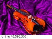 Купить «Скрипка на фиолетовом фоне», фото № 6596305, снято 27 октября 2014 г. (c) Павел Лиховицкий / Фотобанк Лори