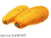 Купить «Два созревших кабачка», фото № 6618977, снято 3 ноября 2014 г. (c) Игорь Веснинов / Фотобанк Лори