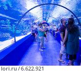 Купить «Посетители в океанариуме, Анталья, Турция», фото № 6622921, снято 19 июня 2014 г. (c) Володина Ольга / Фотобанк Лори