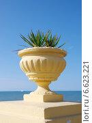 Купить «Декоративный вазон с пальмой на фоне Черного моря в Адлере», фото № 6623221, снято 28 октября 2014 г. (c) Илюхина Наталья / Фотобанк Лори