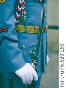 Детали: пражский стражник (2009 год). Стоковое фото, фотограф Виноградова Вероника / Фотобанк Лори