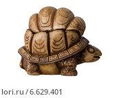 Шкатулка из кости в виде черепахи на белом фоне (2014 год). Редакционное фото, фотограф Дмитрий Богословский / Фотобанк Лори
