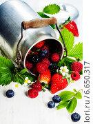 Купить «Свежие ягоды в бидоне», фото № 6650317, снято 8 мая 2014 г. (c) Наталия Кленова / Фотобанк Лори