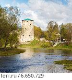 Купить «Грамячая башня и разрушенные старые крепостные стены. Псков, Россия», фото № 6650729, снято 22 ноября 2019 г. (c) Mikhail Starodubov / Фотобанк Лори