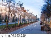 Купить «Бульвар Bulevardul Unirii, Бухарест», фото № 6653229, снято 9 января 2014 г. (c) Сергей Новиков / Фотобанк Лори