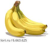 Купить «Гроздь бананов на белом фоне», иллюстрация № 6663625 (c) Веснинов Янис / Фотобанк Лори