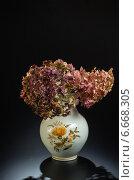 Цветы в белой вазе. Стоковое фото, фотограф Владимир Вдовиченко / Фотобанк Лори