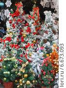 Купить «Много рождественских елок к Новому году и Рождеству. Елочные украшения.», эксклюзивное фото № 6673093, снято 16 ноября 2014 г. (c) Ольга Липунова / Фотобанк Лори