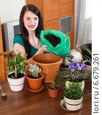 Brunette girl transplanting potted flowers. Стоковое фото, фотограф Яков Филимонов / Фотобанк Лори