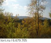 Осень. Стоковое фото, фотограф Екатерина Федосеева / Фотобанк Лори