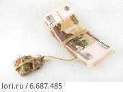 Купить «Падение рубля. Экономический кризис. Концепт», фото № 6687485, снято 20 ноября 2014 г. (c) Ирина Геращенко / Фотобанк Лори