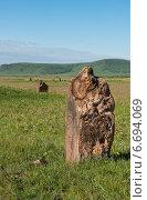 Купить «Древний могильный камень. Хакасия, Сибирь, Россия», фото № 6694069, снято 13 июня 2014 г. (c) Вячеслав Зеленин / Фотобанк Лори