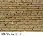Текстура кирпичной стены. Фон из бежевого кирпича. Стоковое фото, фотограф Daniela / Фотобанк Лори