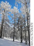 Купить «Зимний пейзаж», фото № 6724673, снято 8 февраля 2014 г. (c) Виталий Горелов / Фотобанк Лори