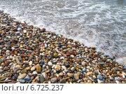 Купить «Галька на берегу моря», фото № 6725237, снято 8 июня 2014 г. (c) Икан Леонид / Фотобанк Лори