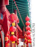 Купить «Китайские фонарики», фото № 6725753, снято 19 августа 2014 г. (c) Андрей Шарашкин / Фотобанк Лори