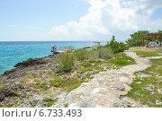 Купить «Тропинка вдоль побережья Карибского моря. Куба», фото № 6733493, снято 17 июня 2014 г. (c) Александр Овчинников / Фотобанк Лори
