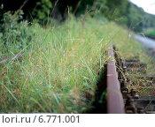 Купить «Bad Doberan Detail disused and overgrown tracks over», фото № 6771001, снято 11 августа 2004 г. (c) Caro Photoagency / Фотобанк Лори