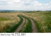 Дорога через поле к виднеющемуся в дали городу. Стоковое фото, фотограф Андрей Шарашкин / Фотобанк Лори