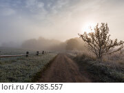 Лесная тропа к усадьбе Тригорское покрытая инеем (2014 год). Редакционное фото, фотограф Слободинская Надежда / Фотобанк Лори