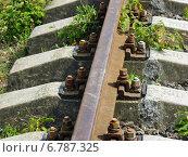Купить «Железнодорожный рельс на бетонных шпалах», фото № 6787325, снято 9 августа 2006 г. (c) Евгений Ткачёв / Фотобанк Лори