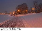 В парке около Гольяновского пруда в Москве после метели вечером (2014 год). Стоковое фото, фотограф lana1501 / Фотобанк Лори