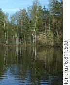 Купить «Весенний лес на берегах реки Поли. Московская область», фото № 6811509, снято 9 мая 2013 г. (c) Самойлова Екатерина / Фотобанк Лори
