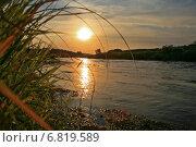 Тихий вечер на закате в августе на берегу реки Угра в заповеднике Калужской области (2014 год). Редакционное фото, фотограф Антонина Морозова / Фотобанк Лори