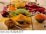 Купить «Selection of dried spices and chilli peppers.», фото № 6824617, снято 30 ноября 2014 г. (c) Tatjana Baibakova / Фотобанк Лори