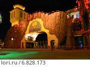 Купить «Московский зоопарк ночью», эксклюзивное фото № 6828173, снято 22 декабря 2014 г. (c) lana1501 / Фотобанк Лори