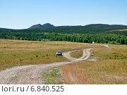 Купить «Казахстан. Лесостепь», фото № 6840525, снято 21 июня 2014 г. (c) Александр Тараканов / Фотобанк Лори