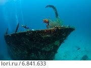 Купить «Мальдивы, затонувшее судно под водой», фото № 6841633, снято 11 февраля 2013 г. (c) Сергей Дубров / Фотобанк Лори