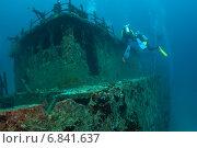 Купить «Мальдивы, дайверы осматривают затонувший сухогруз», фото № 6841637, снято 11 февраля 2013 г. (c) Сергей Дубров / Фотобанк Лори