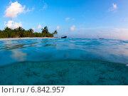 Купить «Берег тропического острова с чистым морем», фото № 6842957, снято 7 февраля 2013 г. (c) Сергей Дубров / Фотобанк Лори