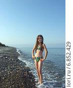 Купить «Маленькая девочка в бикини позирует на пустынном галечном пляже», фото № 6852429, снято 8 августа 2006 г. (c) Евгений Ткачёв / Фотобанк Лори