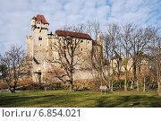 Замок Лихтенштейн (Burg Liechtenstein) на краю Венского леса к югу от Вены. Австрия (2014 год). Стоковое фото, фотограф stargal / Фотобанк Лори