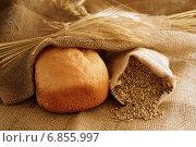 Купить «Хлеб нового урожая», фото № 6855997, снято 25 января 2014 г. (c) Зябрикова Надежда / Фотобанк Лори